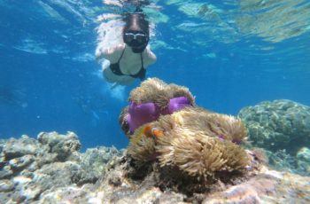 Best Snorkeling Spots in Fiji
